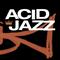 Acid Jazz/Nu Jazz/Electro Jazz/Nu Funk Vibes.