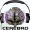 Dj Cerebro