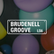 Brudenell Groove