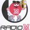 Tufo Veletanlic i Asim Hodzic na Radiju M Göteborg LIVE.mp3(111.0MB)
