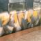 Ransom_Melbourne