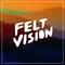 Feltvision