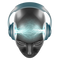 DJ SubVersion