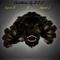 Panthera By B & J