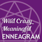 WCME 075: 12-Step Recovery Programs and the Enneagram, with Anne Geary - Wild Crazy Meaningful Ennea