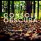 Console Obscura - November Nights