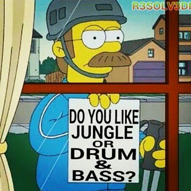 Do You Like Jungle Or Drum & Bass? - RESOLVE LIVE OLDSCHOOL VINYL VS DIGITAL MASHUP