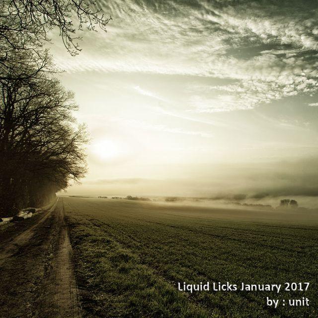 Liquid Licks January 2017