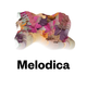 Melodica 21 January 2019