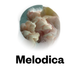 Melodica 27 July 2015