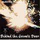 Behind the Cosmic Door 12 - Love Edition (DJ Kneez)