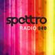 Spettro Radio 040
