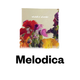 Melodica 22 June 2015