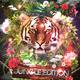 Dj Mazer & Dj Jerome Levis - Jungle Edition CD (10.6.2017)