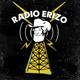 RADIO ERIZO-REY PILA, RADIOHEAD, BAD FOR LASHES, THE SEX PISTOLS, TECHNICOLORS FABRICS Y MUCHOS MÁS