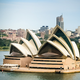 City Guide: Mike Who and Tom Studdy present Sydney