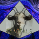 Fractals 006 with Dave Hall (Melodic Techno)