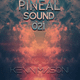 Pineal Sound 021 - Progressive 2018