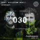 Post Scriptum Music Podcast 030 - Joyhauser Guest Mix