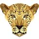 Leopard Roars Show 5