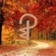 Autumn here I come | Mixtape