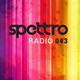 Spettro Radio 043