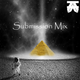 Party at the Pyramids submission mix