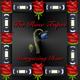 Stargazing Rose Mix