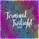 Terminal Twilight 016
