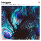 DIM142 - Imogen (Live 2018)