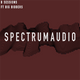 Spectrum Audio B sessions with Chai Fox Ft. Big Bidders