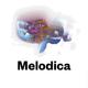 Melodica 2 March 2015