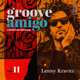 Groove Amigo - ReGrooved Sessions vol. 11 (Lenny Kravitz)