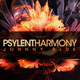 Psylent Harmony (March 2019) (with Johnny Blue) 19.05.2019