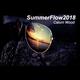 SummerFlow2018
