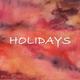 Marcos Carvalho - Holidays
