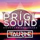 Prígl sound contest by Taurine