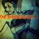 The Tainted Guide (Mixcast) month 12/2018, day 23, 99.2 FM Barcelona 23:00h to 24:00h Gmt Spain