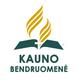 Tikras tikėjimas (2016-04-16) logo