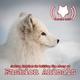 Joshua Katcher Is Telling The Story Of Fashion Animals (509)